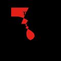 Medentika - N Serie - Stand. Abut. Angled 21° - RN 4.8 GH 0